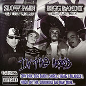 Slow Pain & Bigg Bandit: In the Hood by Various Artists