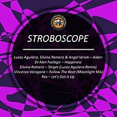 Stroboscope by Various Artists