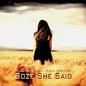 She Said by Christophe Goze