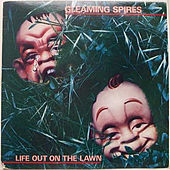 Life out on the Lawn by Gleaming Spires