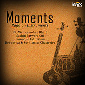 Moments - Raga on Instruments von Various Artists