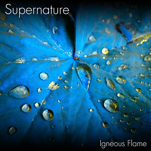 Supernature by Igneous Flame