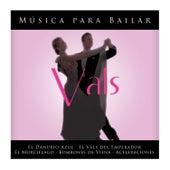 Johann Strauss: Musica para Bailar Vals by Gran Orquesta Vienesa
