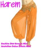 Dechire by Harem