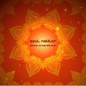 Soul Nektar by Diane Arkenstone