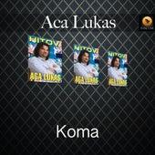 Koma by Aca Lukas