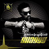 Intoxication by Shaggy