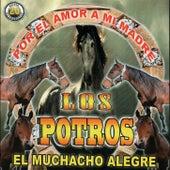 20 Exitos by Los Potros
