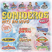 Sonideros Hits En Vivo Vol II by Various Artists