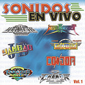 Sonidos En Vivo by Various Artists