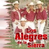 20 Exitos by Los Alegres De La Sierra