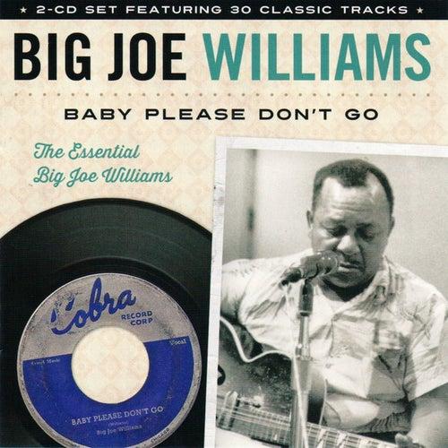 Baby Please Don't Go: The Essential Big Joe Williams by Big Joe Williams