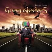 Inertial Frames by Greensleeves