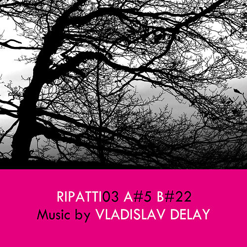 Ripatti03 by Vladislav Delay