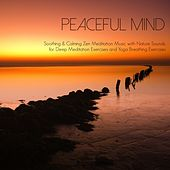 Peaceful Mind - Soothing & Calming Zen Meditation Music with Nature Sounds for Deep Meditation Exercises and Yoga Breathing Exercises by Peaceful Music Orchestra