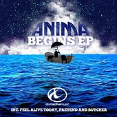 Begins by Anima