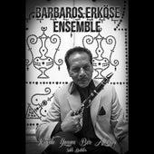 Içimde Yanan Bir Alevsin by Barbaros Erköse Ensemble