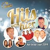 Hits Van Hier - Het Beste Van 2014 by Various Artists