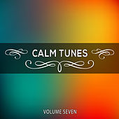 Calm Tunes, Vol. 07 by Various Artists