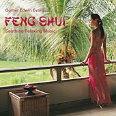 Feng Shui: Soothing Relaxing Music by Gomer Edwin Evans