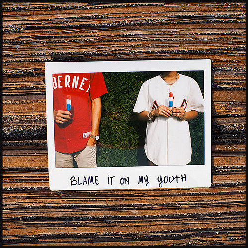 Blame It on My Youth by Brothers From Another