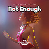 Not Enaugh - Sexy Chillout Ecstasy by Various Artists