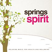 Springs Spirit (Relaxing Music for Health and Wellbeing) by Jeffery Smith