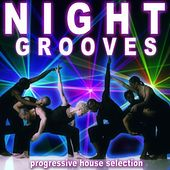 Night Grooves by Various Artists