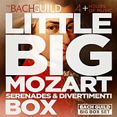 Little Big Mozart Serenades & Divertimenti Box by Various Artists