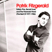 Safety Pins, Secret Lives and the Paranoid Ward (The Best of 1977-1986) by Patrik Fitzgerald