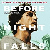 Before Night Falls by Various Artists