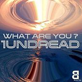 What Are You? - EP by 1undread