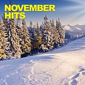 November Hits by Various Artists