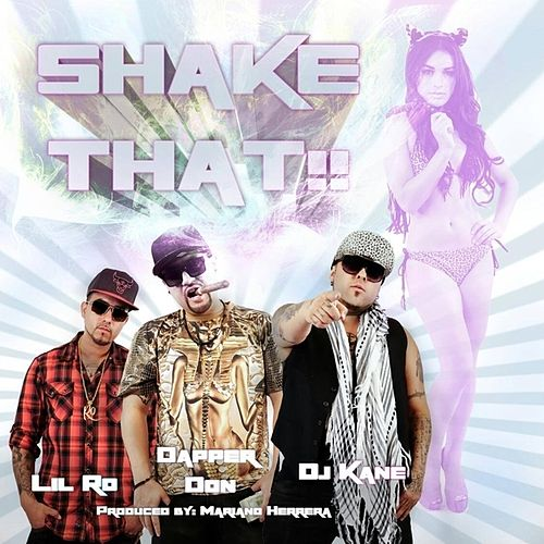 Shake That - Single by DJ Kane