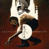 Monocyte: The Lapis Coil by Saltillo