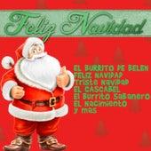 Feliz Navidad: El Burrito de Belen, Feliz Navidad, Triste Navidad, El Cascabel, El Burrito Sabanero, El Nacimiento y Mas by Various Artists