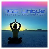 100 Unique Lounge & Relaxing Vibes by Various Artists