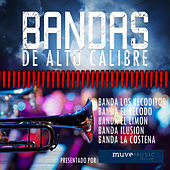 Bandas de Alto Calibre: Banda los Recoditos, Banda el Recodo, Banda el Limon, Banda Ilusion, Banda la Costeña by Various Artists