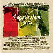 Reggae Jam Riddim by Various Artists