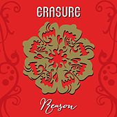 Reason by Erasure