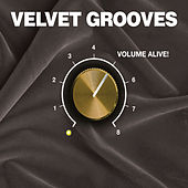 Velvet Grooves Volume Alive! by Various Artists
