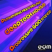 Psychedelic Hard House, Deep Tech House & Progressive Goa Trance by Various Artists