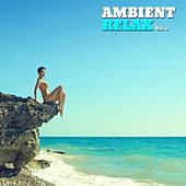 Ambient Relax, Vol. 4 by Various Artists