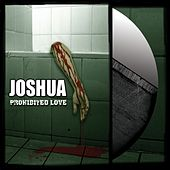 Prohibited Love by Joshua
