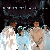Angel Voices: Libera in Concert by Robert Prizeman
