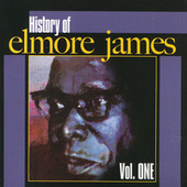 History Of Elmore James by Elmore James