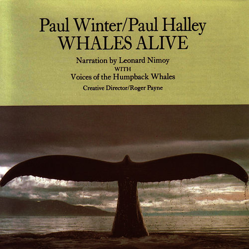 Whales Alive by Paul Winter