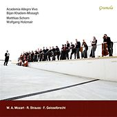 Mozart, Strauss & Geisselbrecht by Various Artists
