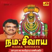 Nama Shivaya by S.P.Balasubramaniam