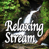 Relaxing Stream (Nature Sounds) by Natural Sounds